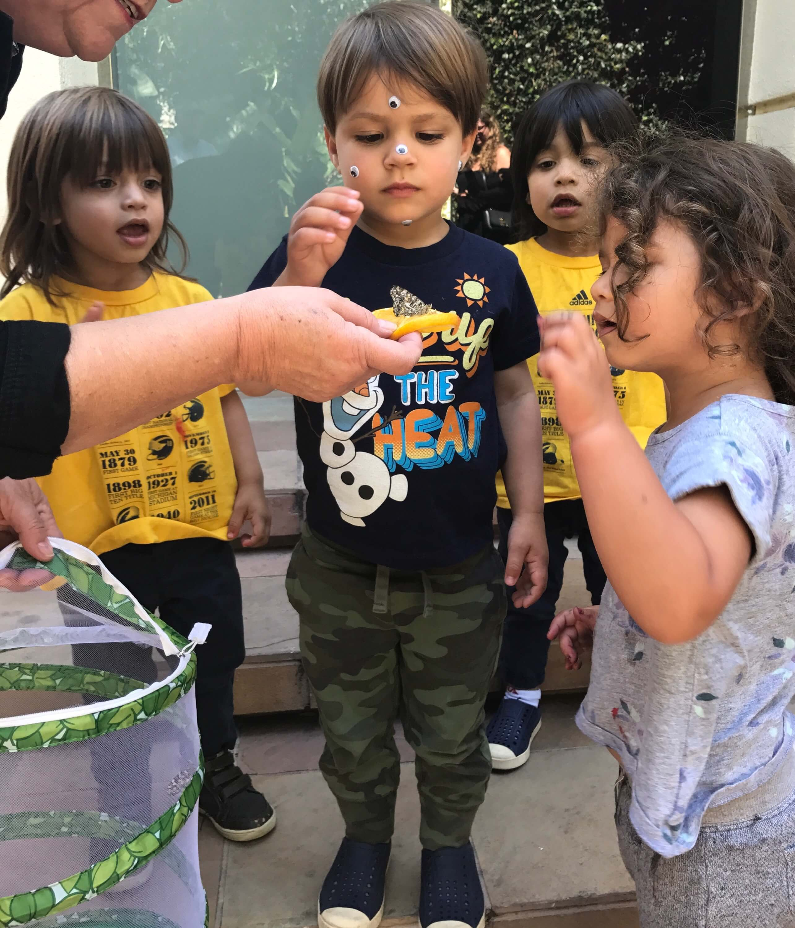 3 toddlers looking at orange with a buterfly above at early childhood development associates class