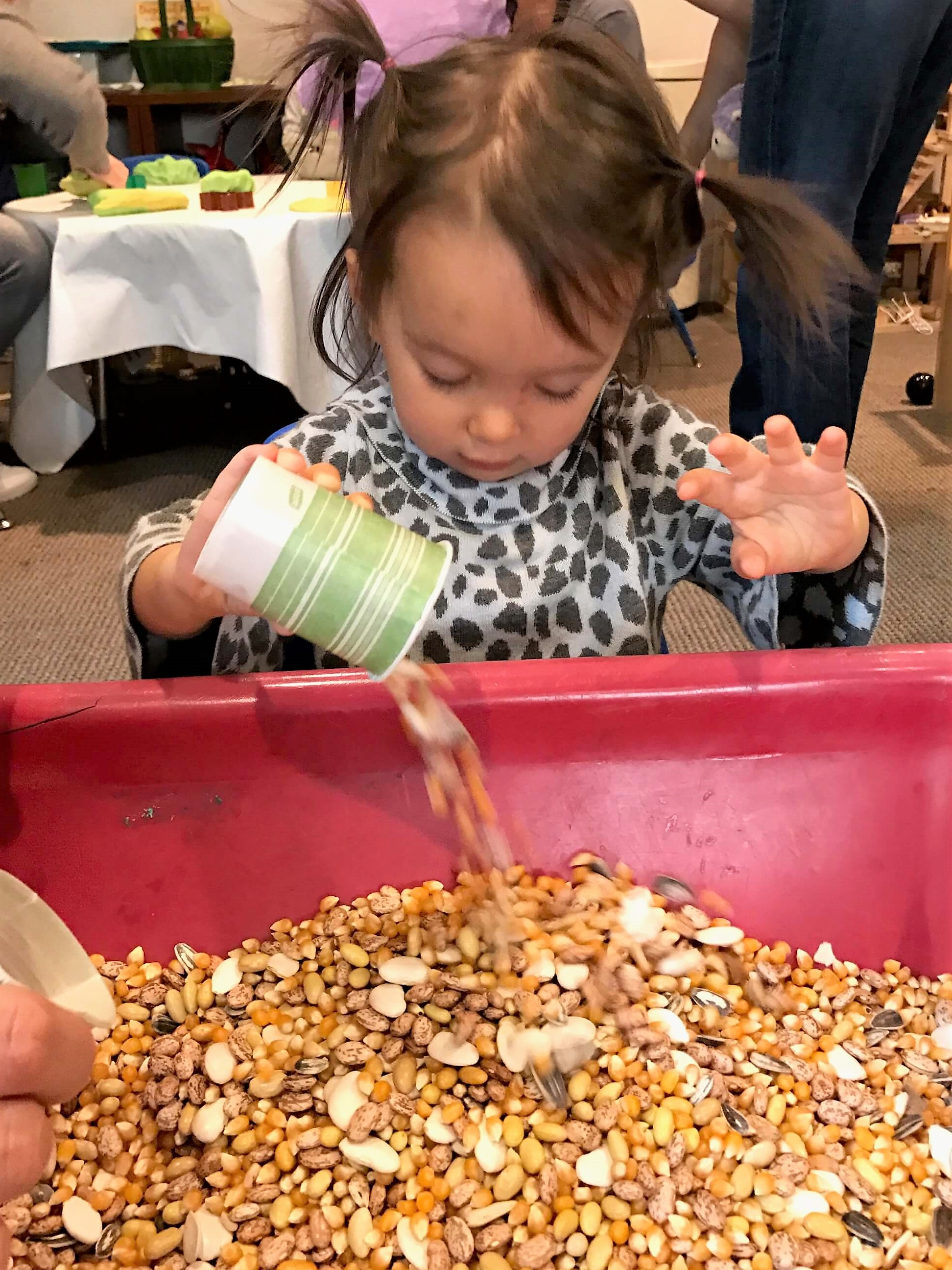 toddler girl pouring seeds into sesnsory table at early childhood development associates' class