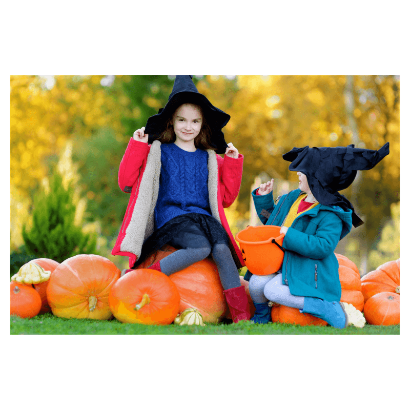 2 toddler girls playing on pumpkin field wearing witch costumes