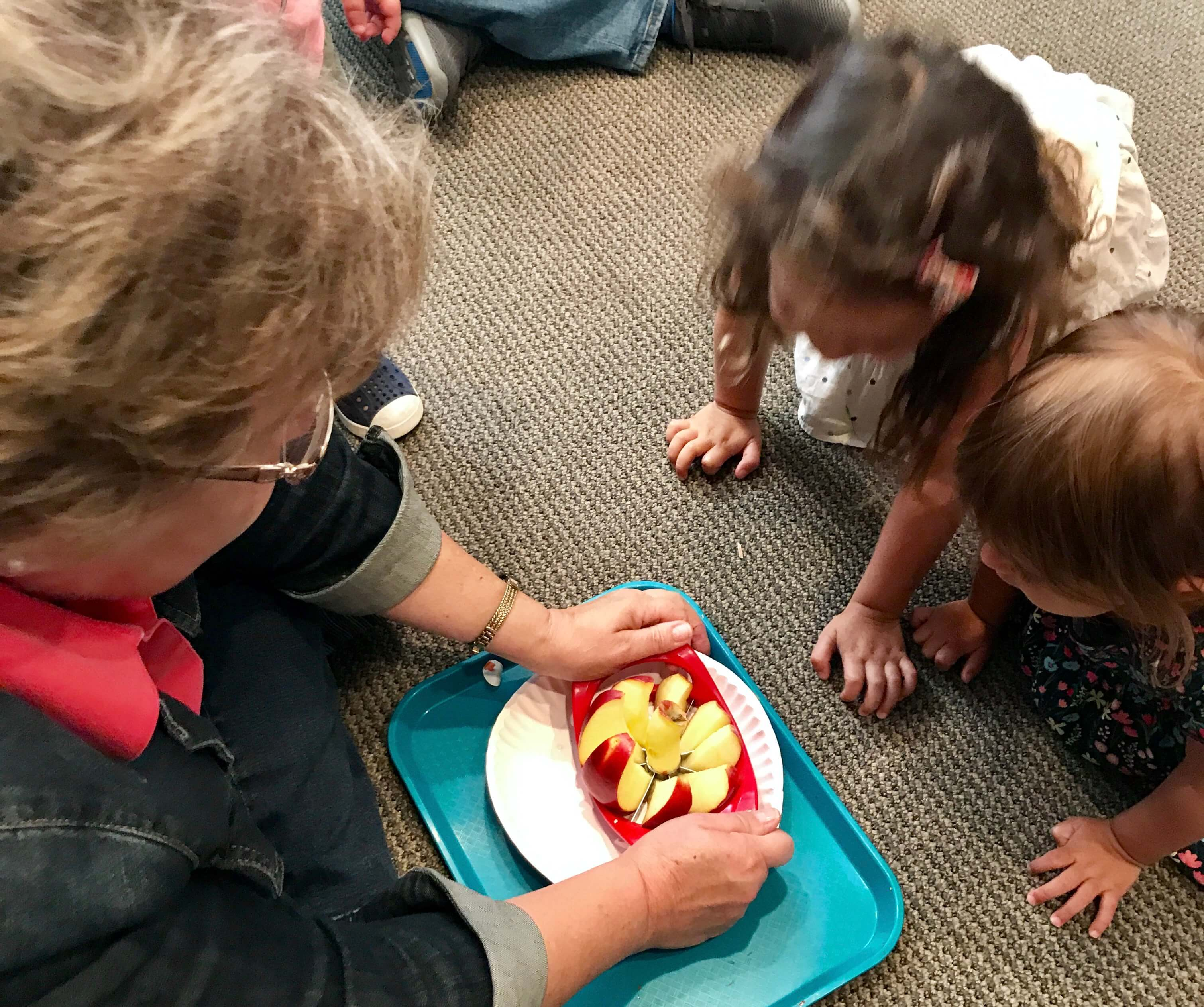 2 toddler looking at teacher's hands cutting apples with a apple cutter